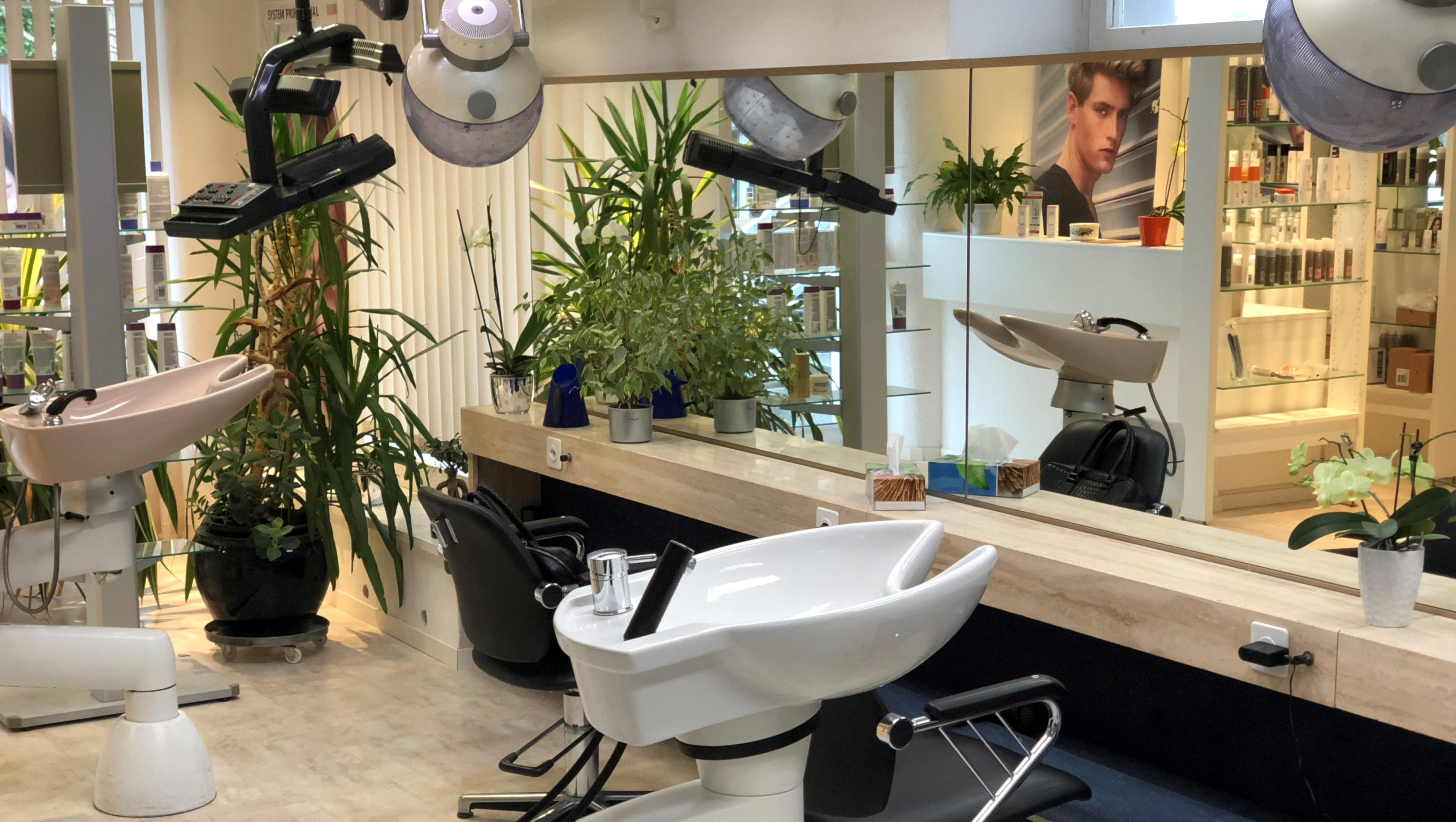 Coiffeur Salon - Wash and Style